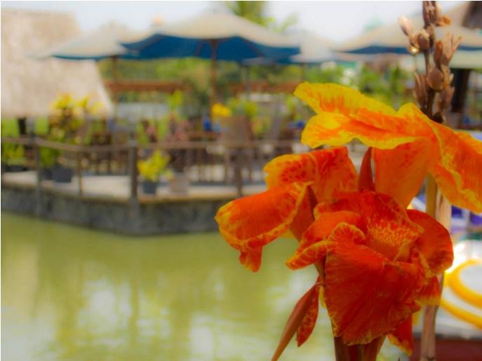 Hunting Foto di Gubug Makan Mang Engking (4)