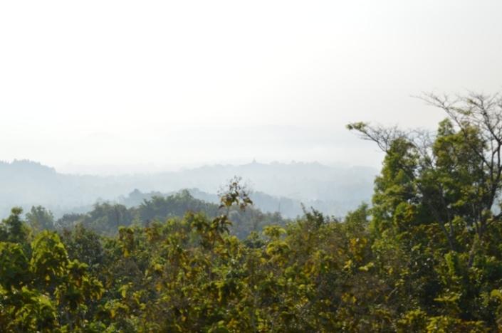 Bukit Rhema (16)