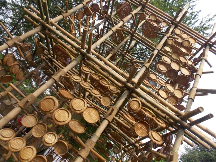 bamboobelianne-22
