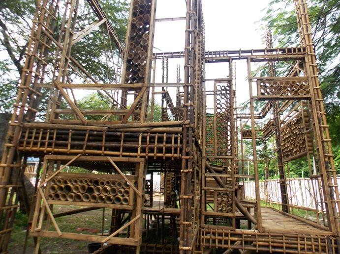 bamboobelianne-25
